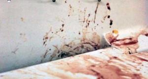 Oscar Pistorious Crime Scene Photos (14 photos) 13