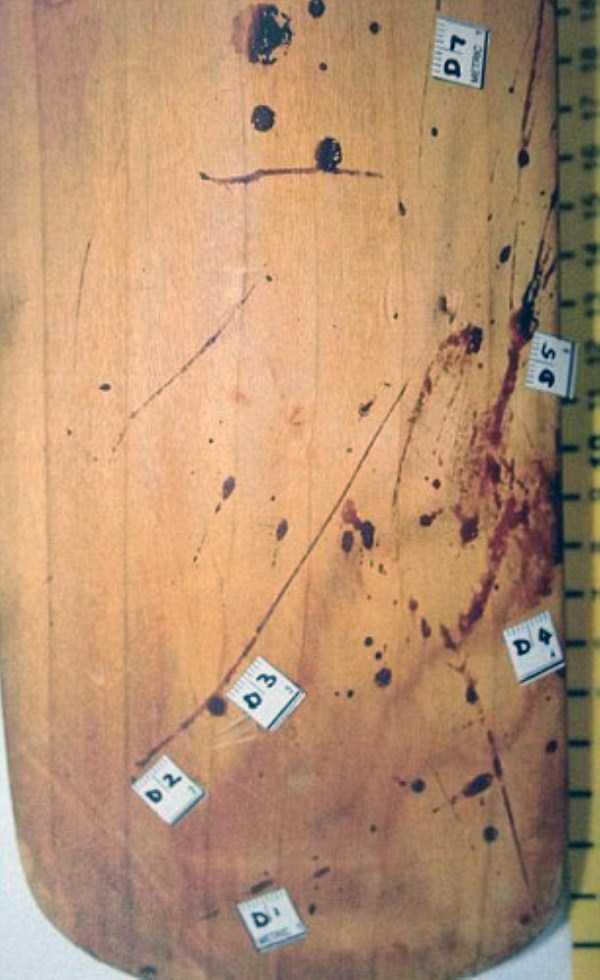 oscar-pistorius-murder-crime-scene (3)
