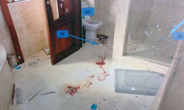 oscar-pistorius-murder-crime-scene (8)