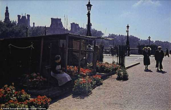 Paris-during-Nazi-occupation  (11)