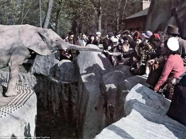 Paris-during-Nazi-occupation  (19)