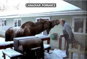 Things That are Unique to Canada (27 photos) 21