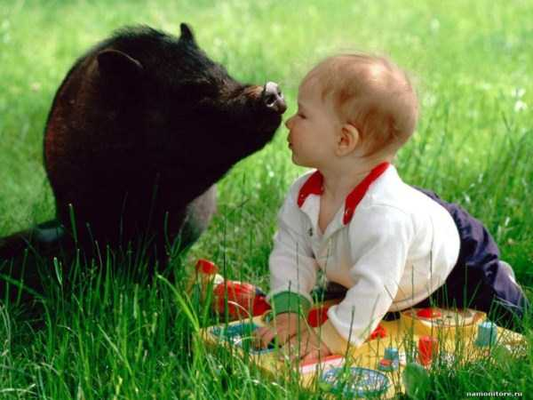 children-and-animals (5)