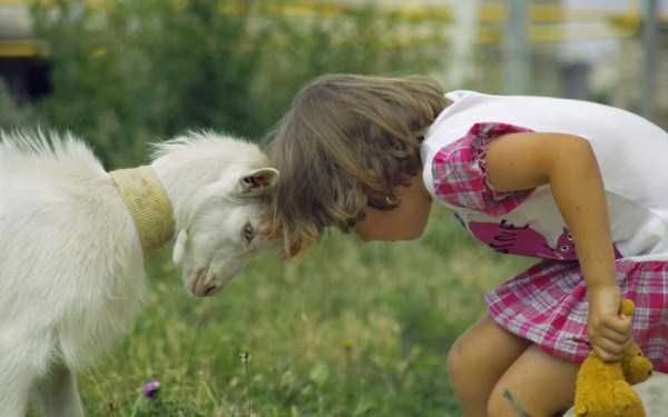 children-and-animals (7)