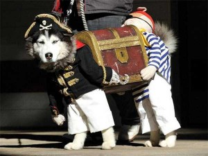 Ridiculous Yet Hilarious Halloween Pet Costumes (18 photos) 1
