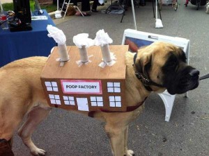 Ridiculous Yet Hilarious Halloween Pet Costumes (18 photos) 5