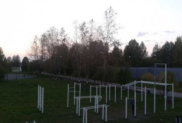 diy-outdoor-gym (86)