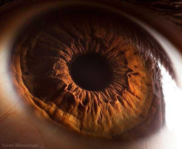 extreme-close-up-of-human-eye-macro-suren-manvelyan-10