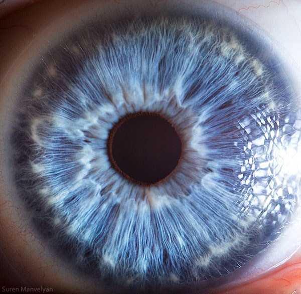 extreme-close-up-of-human-eye-macro-suren-manvelyan-20