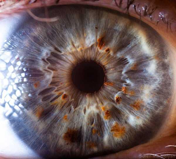 extreme-close-up-of-human-eye-macro-suren-manvelyan-21