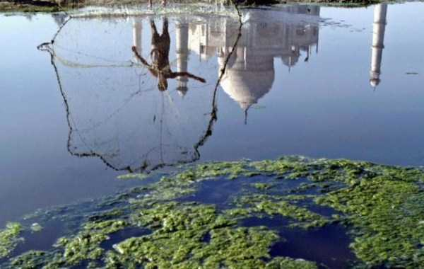 polluted-rivers-in-india (6)