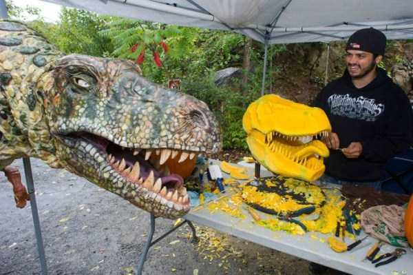 T-Rex's Head Made From Carved Pumpkin (8 photos) 8