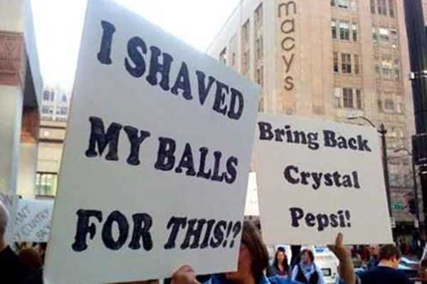 funny-protest-signs (8)