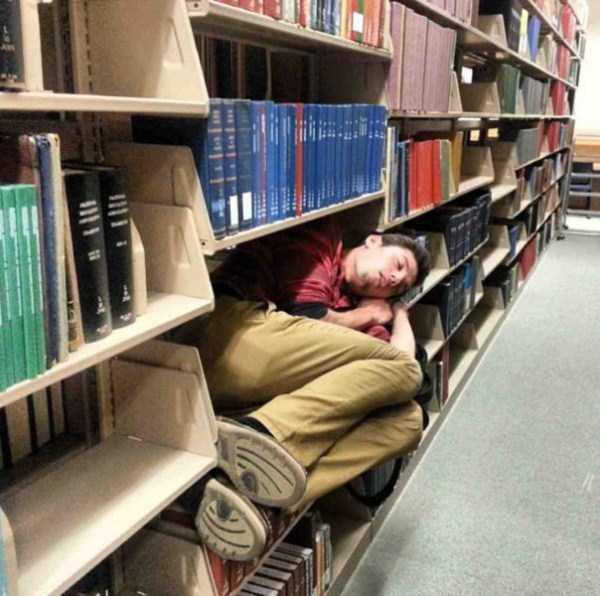people-can-sleep-everywhere (3)