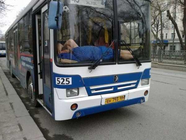 people-can-sleep-everywhere (5)
