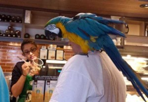 24 WTF Things Spotted at Starbucks (24 photos) 12