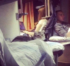 Vivid Travelers Spotted in the Russian Trains (22 photos) 3