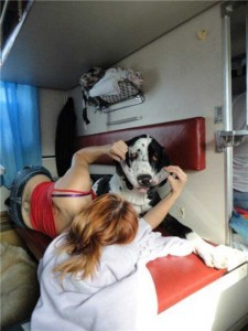 Vivid Travelers Spotted in the Russian Trains (22 photos) 7