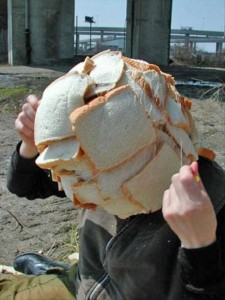 Something Weird is Happening Here (28 photos) 16
