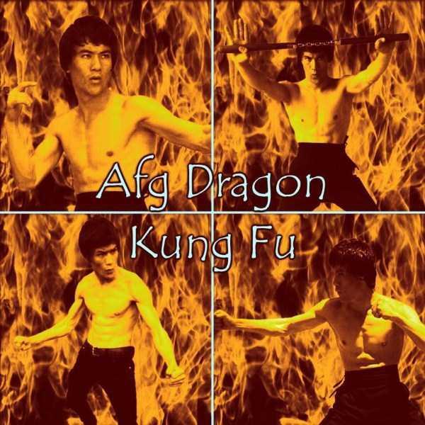 Abbas-Alizada-Afghan-Bruce-Lee (24)