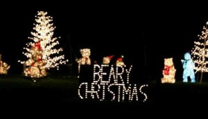Pretty Lame Christmas Puns (35 photos) 13