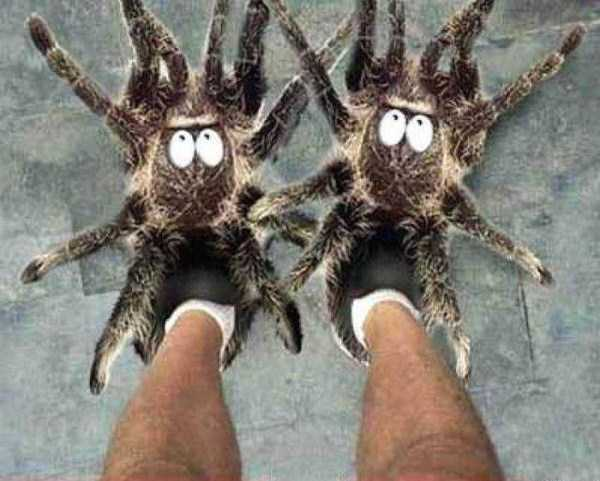funny-designed-slippers (5)