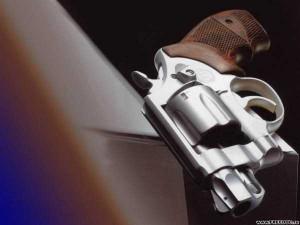 Powerful Revolvers (31 photos) 10