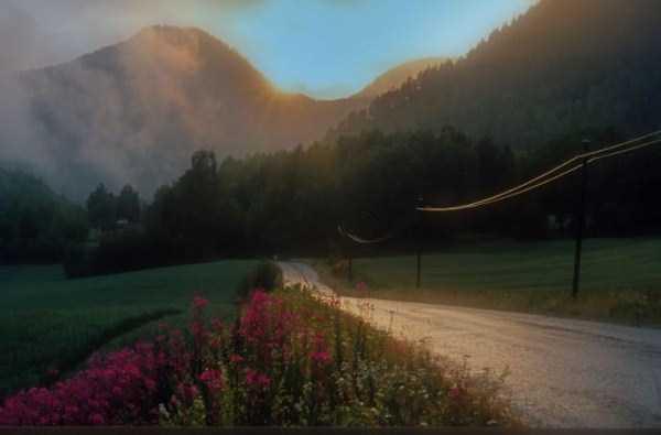 norway-nature (38)