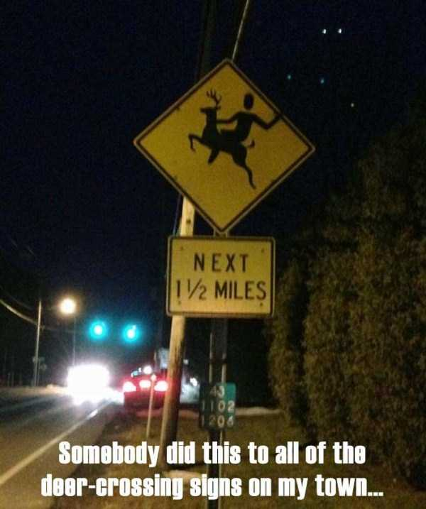 people-with-sense-of-humour (25)