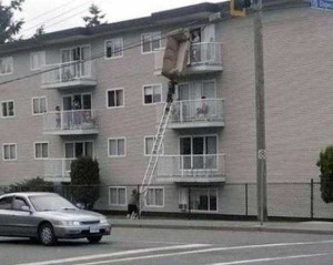 Some People are Undoubtedly Dumb (37 photos) 37