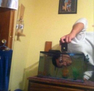 44 Extremely Stupid and Pointless Selfies (44 photos) 6