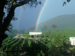 Unexpected Things Spotted at the End of a Rainbow (31 photos) 14