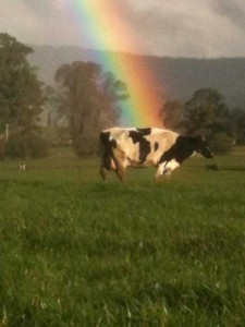 Unexpected Things Spotted at the End of a Rainbow (31 photos) 30