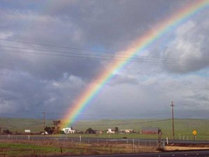 Unexpected Things Spotted at the End of a Rainbow (31 photos) 5