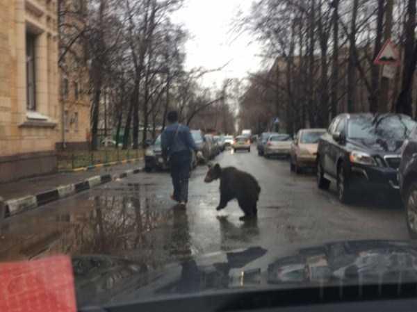 weird-photos-from-russia (11)