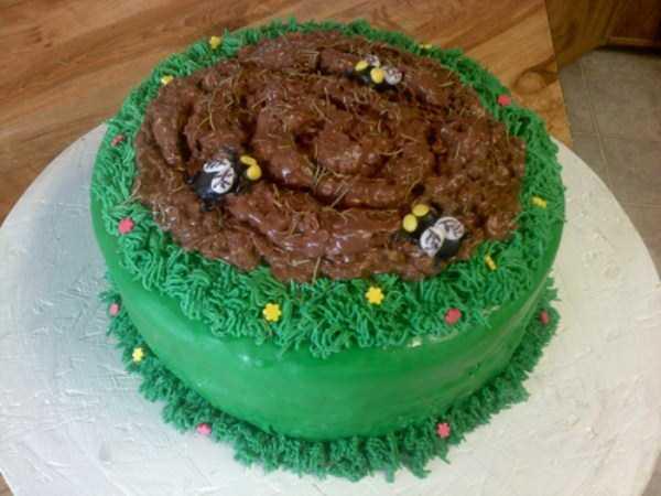 cake-fails (11)