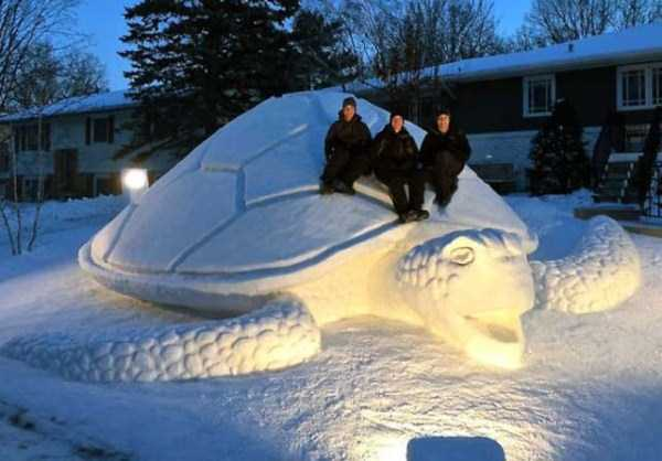cool-snow-sculptures (19)