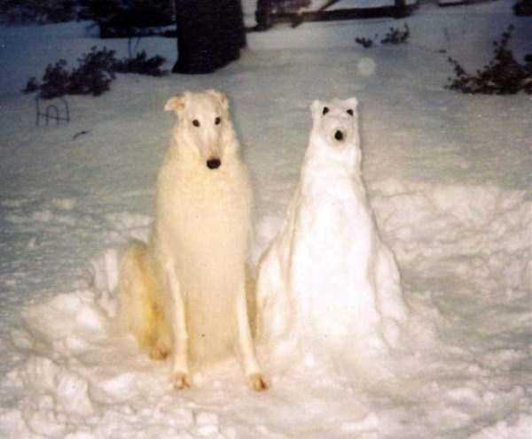 cool-snow-sculptures (24)