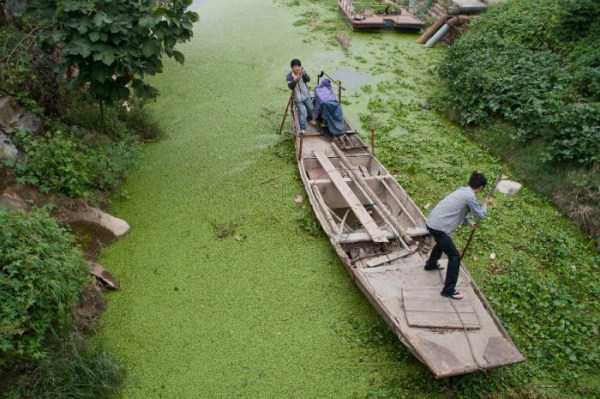 environmental-pollution-in-china (11)