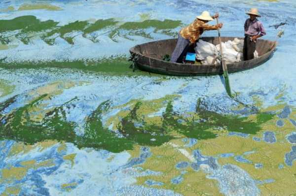 environmental-pollution-in-china (14)
