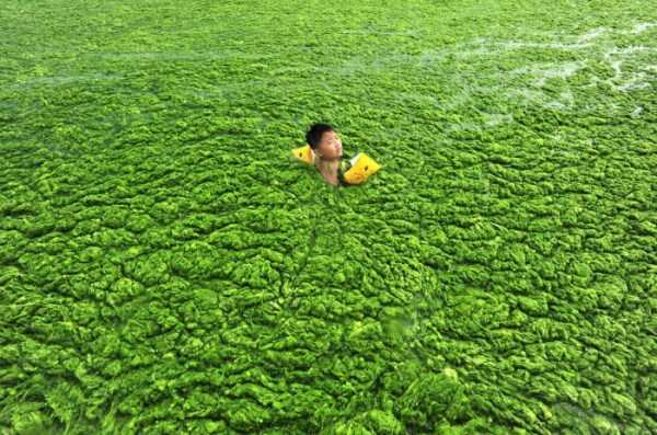 environmental-pollution-in-china (24)