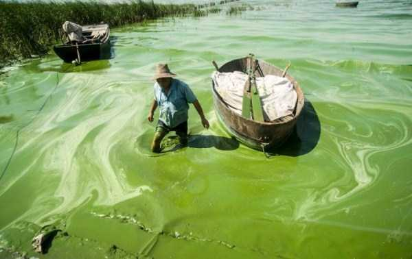 environmental-pollution-in-china (7)