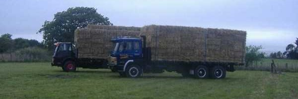 house-of-straw (1)