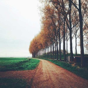 45 Awesome Landscape Photos Taken With an iPhone (45 photos) 3