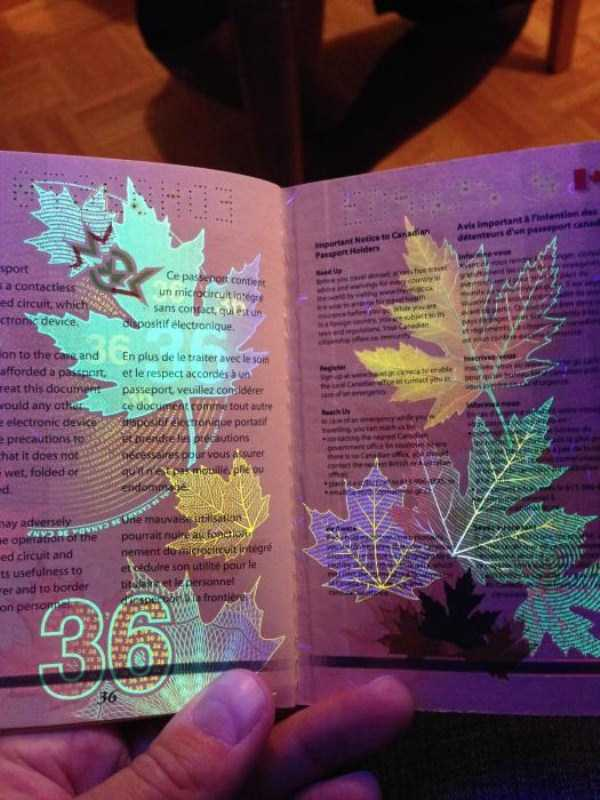 new-canadian-passport-under-ultraviolet-light (18)