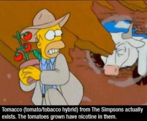 A Few Interesting Facts About Simpsons (14 photos) 14