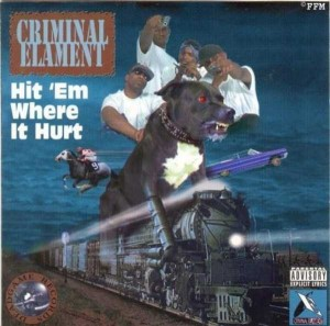 Rap Album Covers That Suck (27 photos) 6