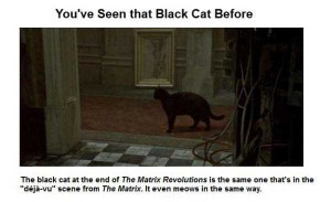 Interesting Things You Might Not Have Known About 'The Matrix' (50 photos) 1