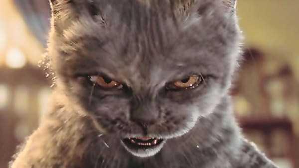 evil-cats (7)