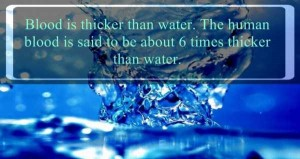 Must-Know Facts About Water (24 photos) 2